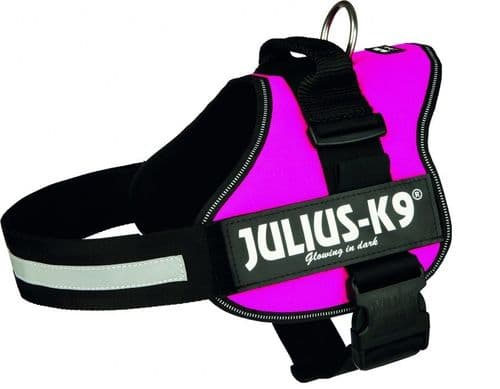 Julius-K9 Power Harness Pink