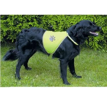 Reflective Dog WaistCoat High Visibility Jacket
