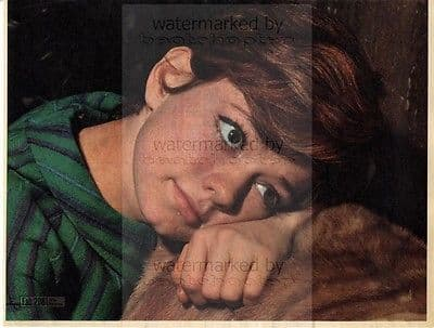 RITA PAVONE size approx 10X13 inch pinup poster size press cutting/clipping 1967