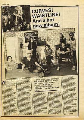 Wayne County 1 page Interview Music Press article/cutting/clipping 1979