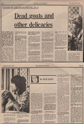 Rolling Stones Dead goats & other delicacies original Vintage Music Press article 1973