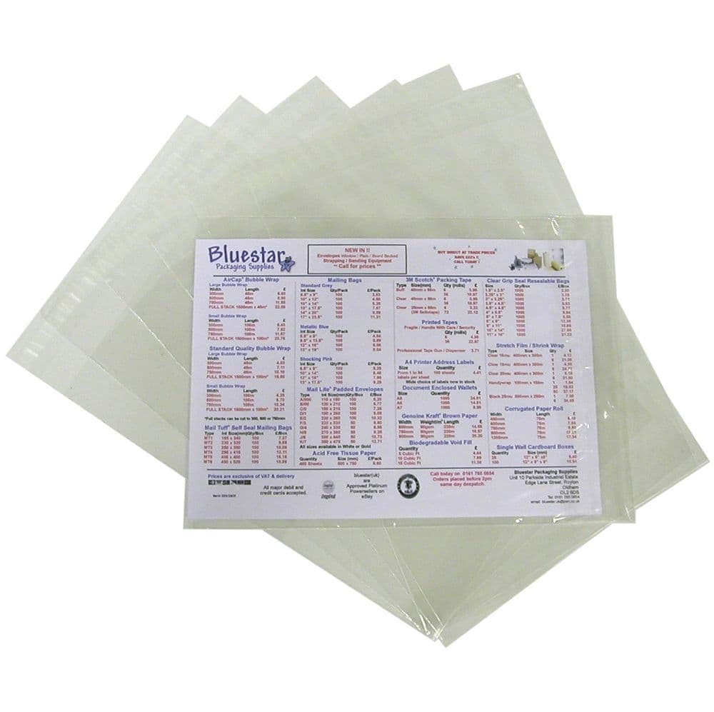 """Clear Mailing Bags 10"""" x 13"""" (255mm x 340mm) - Pack of 100"""