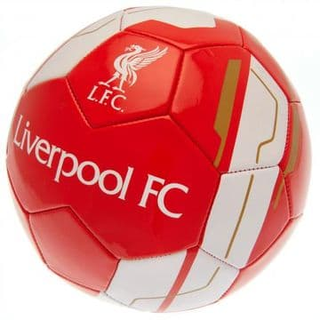Liverpool FC Football VR