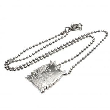 Manchester City Stainless Steel Pendant & Chain CR