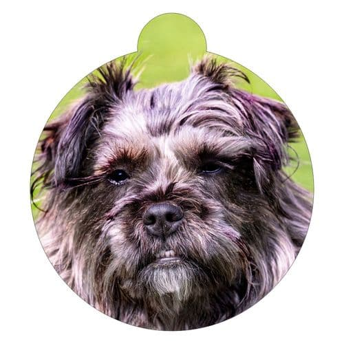A Breed Picture ID tag