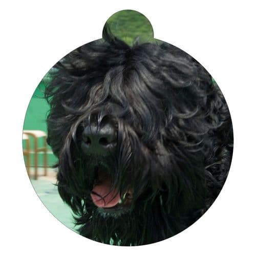 Black Russian Terrier Picture ID tag