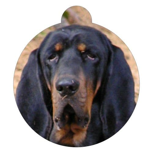Black & Tan Coon Hound Picture ID tag